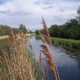 The Lode or river at Wicken Fen National Nature Reserve, Cambridgeshire, England. Taken 2004.