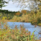 Paxton Pits Nature Reserve, near to Great Paxton, Cambridgeshire, Great Britain.
