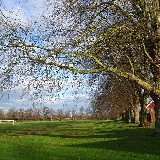 Looking across the middle of the park towards the railway.