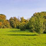Trent Park, London N14 Looking east in Trent Park from near the entrance opposite Oakwood Station.