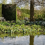 Across the Upper Pond with pondside plants and border, with garden benches and boxwood hedge, in the Royal Horticultural Society Hilltop Garden of RHS Hyde Hall, in Rettendon, Essex, England. Camera: Canon EOS 6D with Canon EF 24-105mm F4L IS USM lens. Software: RAW file lens-corrected, optimized and converted with DxO OpticsPro 11 Elite, and further optimized with Adobe Photoshop CS2.