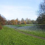 Northlands Park, Basildon.