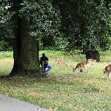 Markfield Institute student visiting Bradgate Park