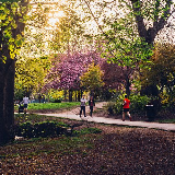 One of the many pathways in the park.