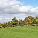 The avenue of trees at Chatelherault Country Park This avenue, seen here in Autumnal colours, leads from the Chateau to the Low Parks in Hamilton