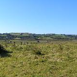 fon Llwchwr Estuary near Gowerton This area is World famous for the Welsh salt-marsh lamb - I recommend it!