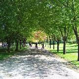 A wonderfull sight in Bursa Botanic Park