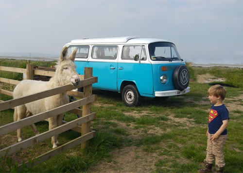 A VW T2 Classic Campervan called Ronnie and It's always nice to meet friends for hire in northam, Devon